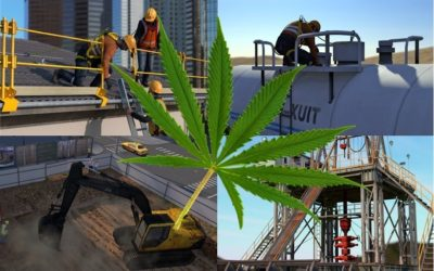 Cannabis / Marijuana in the Workplace