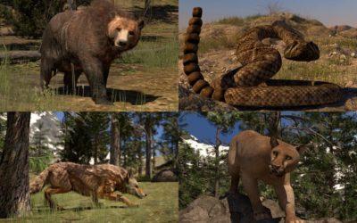 Wildlife Awareness (includes Bear Awareness)